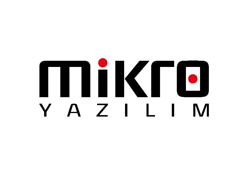 mikro muhasebe programı